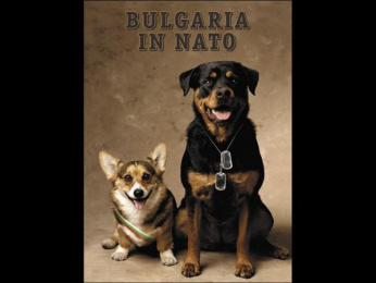 """Bulgaria in NATO: """"Brothers-in-arms"""" Print Ad by New Moment New Ideas Company Sofia"""