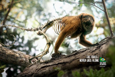 Sos Mata Atlantica: Monkey Print Ad by DPZ Sao Paulo