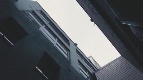 Wrangler: Wild City - Main Campaign Film Film by Hurricanes, WE ARE Pi