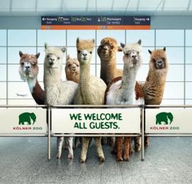 Zoo Cologne: Alpaca Print Ad by Preuss Und Preuss Germany