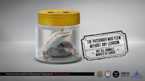 UNEP: Forced Migration, 2 Print Ad by Ogilvy & Mather Mumbai