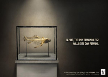 WWF: Remains Print Ad by Team collaboration