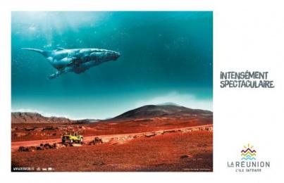 Ile de la Reunion Tourisme (IRT): Whale Print Ad by Havas Reunion