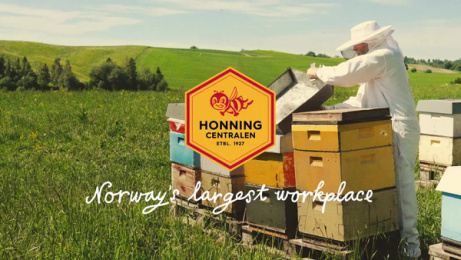 Honningcentralen (The Honey Central): Norway's largest workplace: Administration Film by Atyp Oslo