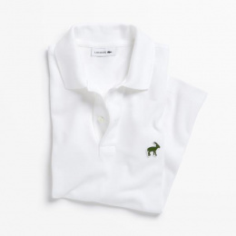 Lacoste: Polo, 10 Design & Branding by ALLSO, BETC