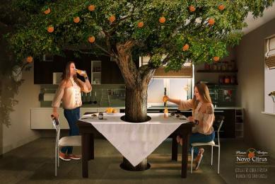 Novo Citrus: Reap a Fruit Has Never Been Easier Print Ad by ESPM-Sul Porto Alegre