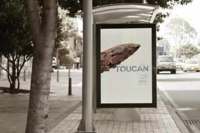 Natural History Museum/ NHM: Deforested Bones - Toucan Outdoor Advert by Havas Creative Columbia