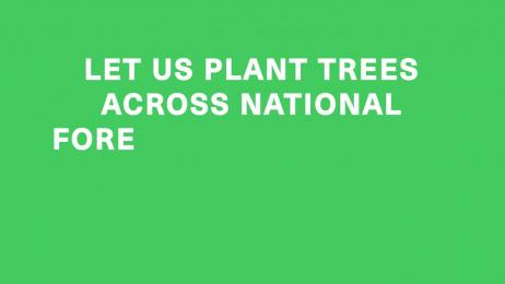Treepex: Treepex Film by Team collaboration