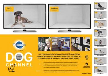 Pedigree: Dog channel [spanish] Outdoor Advert by ALMAP BBDO Brazil, Trator Filmes