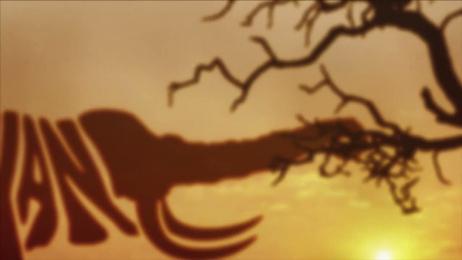 Ifaw: Elephant March Film by Rapp Collins Amsterdam, Tribal Amsterdam