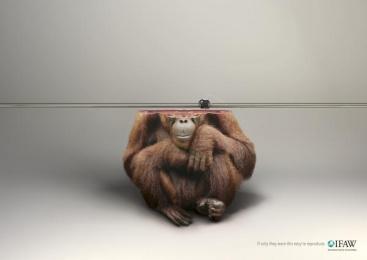 Ifaw/international Fund Of Animal Welfare: Monkey Print Ad by Y&R Paris