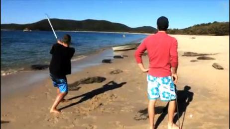 Xxxx Gold Beer: XXXX ISLAND [video] Case study by BMF Australia, Lion Nathan, Octagon