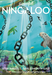 Protect Ningaloo: Beautiful Ningaloo - Underwater Print Ad by Wunderman Thompson Perth