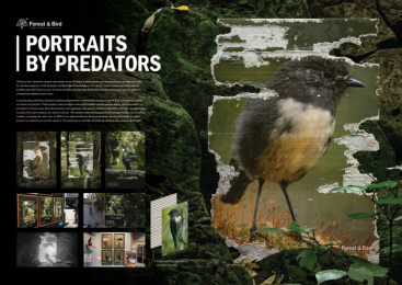 New Zealand Forest & Bird: Portraits by Predators, 5 Print Ad by Colenso BBDO Auckland