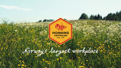 Honningcentralen (The Honey Central): Norway's largest workplace: Open Landscapes Film by Atyp Oslo