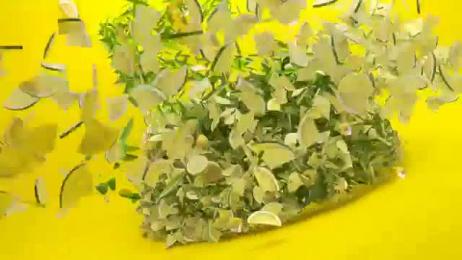 Lipton Ice Tea: Lipton Ice Tea New Bottle! Film by Socialab