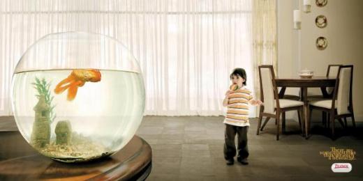 Tylenol: GOLD FISH Print Ad by Vale Euro Rscg Mexico