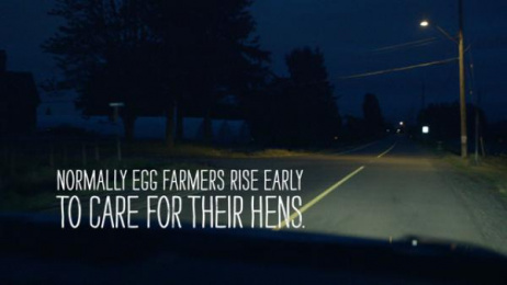 BC Egg Marketing Board: Good Morning BC - Food Bank Print Ad by DDB Vancouver, OMD Vancouver, TRANSMISSION
