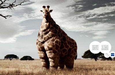 Zeiss: GIRAFFE Print Ad