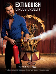 People For The Ethical Treatment Of Animals (PETA): Extinguish Circus Cruelty Print Ad by Team collaboration