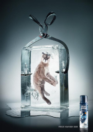Right Guard Deodorant: COUGAR Print Ad by TBWA\ Dusseldorf