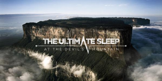 Ibis Hotel: The Ultimate Sleep Print Ad by BETC