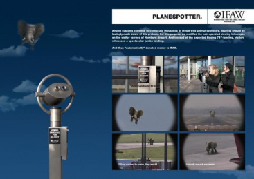 Ifaw/international Fund Of Animal Welfare: PLANESPOTTER Print Ad by Springer & Jacoby Germany