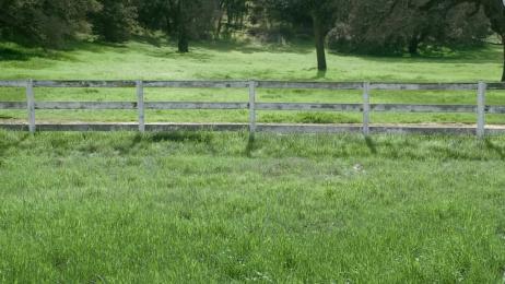 Promised Land Dairy: Meet Agatha Film by Publicis Hawkeye