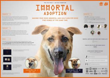 Thai Dog House: Immortal Adoption [image]  Digital Advert by BBDO Bangkok, Klackfilms