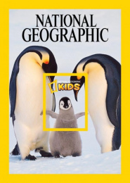 National Geographic Kids: Penguin Print Ad by Rafineri