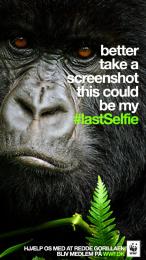 WWF: #LastSelfie, Gorilla Print Ad by Grey Copenhagen