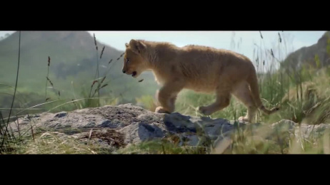 Perrier Fines Bulles: The Lion [Making Of] Making of by Ogilvy Paris, The Gang Films