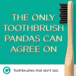 Goodwell Co.: Toothbrushes That Don't Last, 4 Print Ad by Undnyable