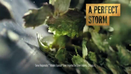 Modelo Especial Lager: The Fight for the Model Beer Film by IDENTITY, Ogilvy & Mather Chicago