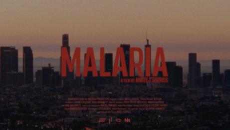 #HouselessNotHomeless: Malaria, 2 Print Ad by Bonaparte Films