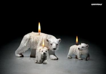 Greenpeace: BEARS Print Ad by Euro Rscg Madrid
