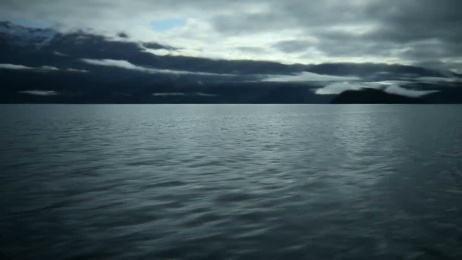 Molson Canadian Beer: Made From Canada Film by Zig