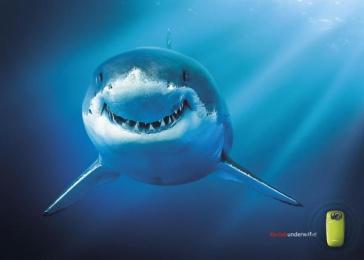 PLAYSPORT UNDERWATER CAMERA: SHARK Print Ad by Ogilvy & Mather London