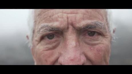 Galicia Ambiental: Trees of Ash Film by Petra Garmon, Tiempo BBDO