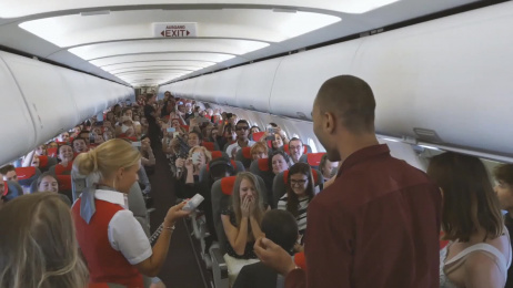 Austrian Airlines: The Most Charming Wedding Proposal Film by PKP BBDO Vienna, Warda Network