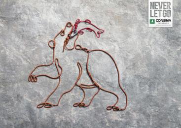 Consina: Wild Life, 3 Print Ad by Hakuhodo Jakarta
