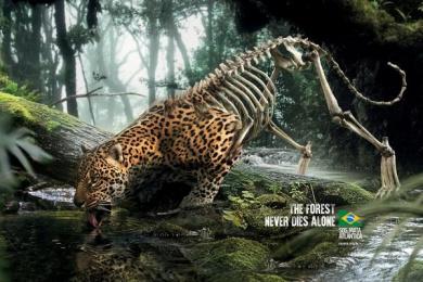 Sos Mata Atlantica: Leopard Print Ad by DPZ Sao Paulo