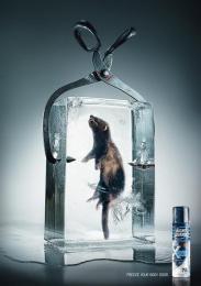 Right Guard Deodorant: POLECAT Print Ad by TBWA\ Dusseldorf