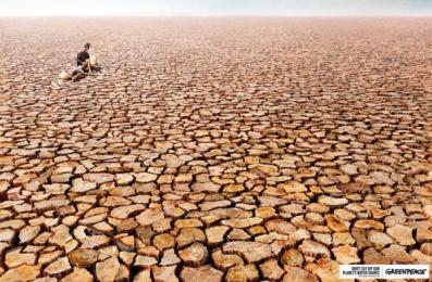 Greenpeace: Drought Print Ad by Hakuhodo Malaysia