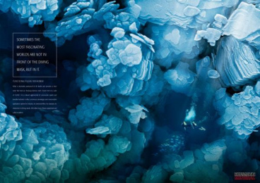Siliceous Earth: DIVERS Print Ad by Serviceplan Munich