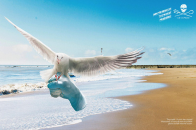 Sea Shepherd: Gloves - Seagull Print Ad by Wings The Agency