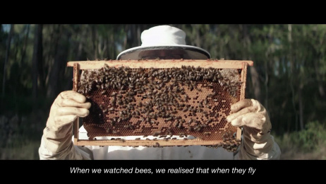 Greenpeace: Bees Ambient Advert by Tiempo BBDO