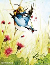Lust Erotic Boutique: Birds & Bees, 3 Print Ad by Grey Copenhagen