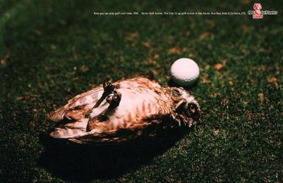 Kaiser Golf Center: OWL Print Ad by Upgrade Comunicacao Total