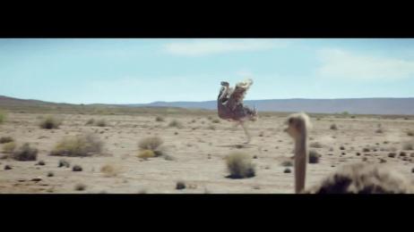 Samsung: Ostrich Film by Leo Burnett Chicago, MJZ, MPC, The Elements Music London